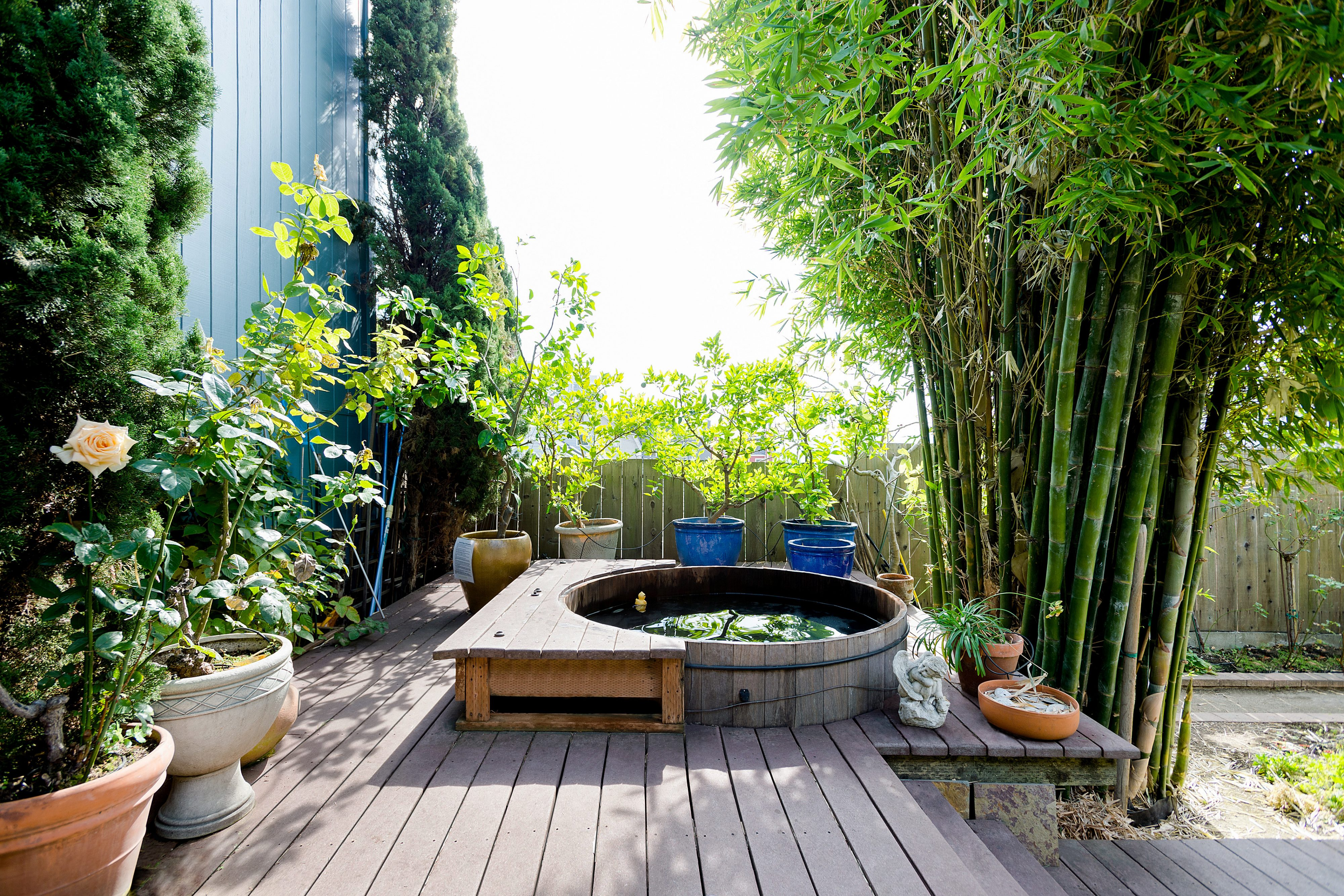 outdoor wooden hot tub surrounded by bamboo and plants